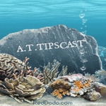 A.T.TIPSCAST etched on a rock underwater